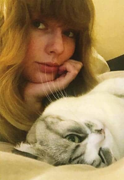 Taylor Swift in the beauty and the cat snap